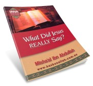 what-did-jesus-really-say-book170